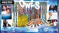 "o.w.n. -owls""Blue Dream""Release Party-"