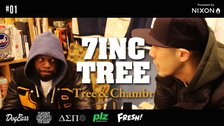 7INC TREE - Tree & Chambr     #1