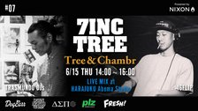 7INC TREE - Tree & Chambr   #7