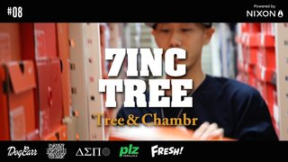 7INC TREE - Tree & Chambr -  #8
