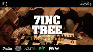 7INC TREE - Tree & Chambr -  #10