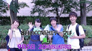 CCN.TV vol38 予告