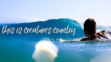 """""""This is Creatures Country""""キャンペーン ショートクリップ"""