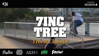 7INC TREE - Tree & Chambr   #24