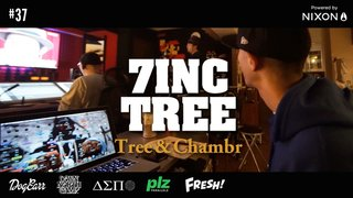 7INC TREE - Tree & Chambr    #37