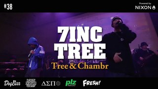 7INC TREE - Tree & Chambr    #38