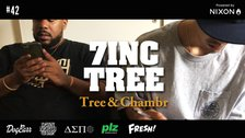 7INC TREE - Tree & Chambr #42