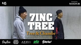 7INC TREE - Tree & Chambr #45