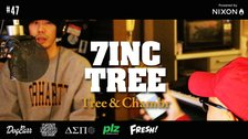 7INC TREE - Tree & Chambr #47