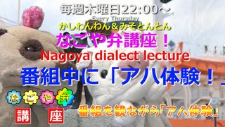 「なごや弁講座 ~Nagoya dialect lecture~」Vol.30