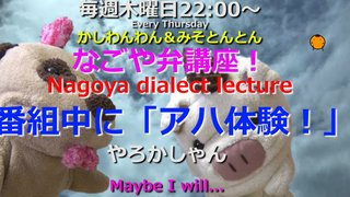 「なごや弁講座 ~Nagoya dialect lecture~」Vol.38