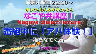 「なごや弁講座 ~Nagoya dialect lecture~」Vol.40