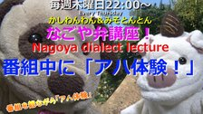 「なごや弁講座 ~Nagoya dialect lecture~」Vol.44