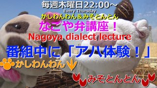 「なごや弁講座 ~Nagoya dialect lecture~」Vol.47