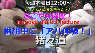 「なごや弁講座 ~Nagoya dialect lecture~」Vol.55