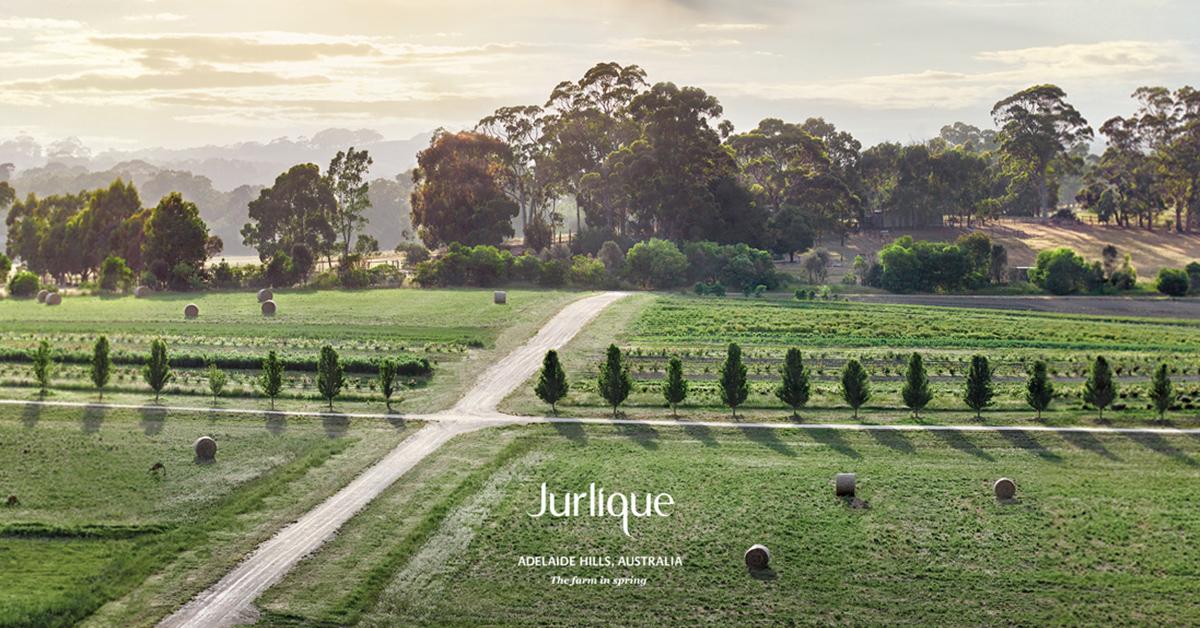 Jurlique(ジュリーク)のイメージ画像
