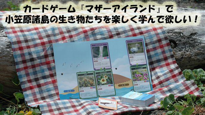 カードゲーム『マザーアイランド』で小笠原諸島の生き物たちを楽しく学んで欲しい!