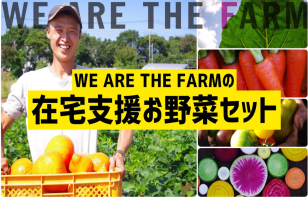 WE ARE THE FARMの在宅支援お野菜セット