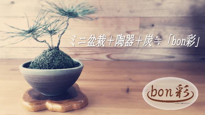 ミニ盆栽+陶器+バイオ炭=「bon彩」~インテリア感覚で気軽に楽しめる緑の癒し~