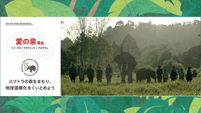スマトラの森を守り、地球温暖化を食い止めよう!「愛の泉」プロジェクト応援!第2弾