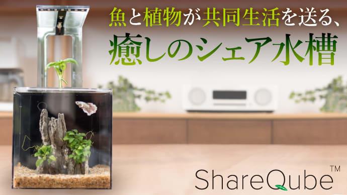 魚と植物の共同生活、水替え不要のシェア水槽! 生きるインテリア「シェアキューブ」