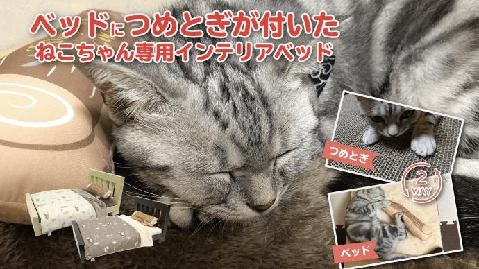 Makuake|ねこちゃん専用!ゆったりくつろげる本格ねこベッドを作りたい!