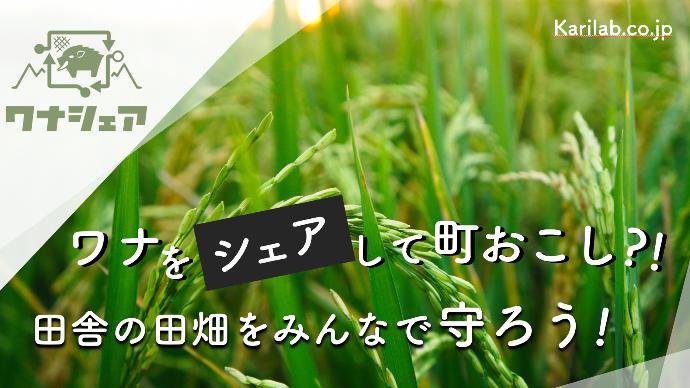 Makuake|罠をシェアして町おこし?! 田舎の田畑をみんなで守ろう!