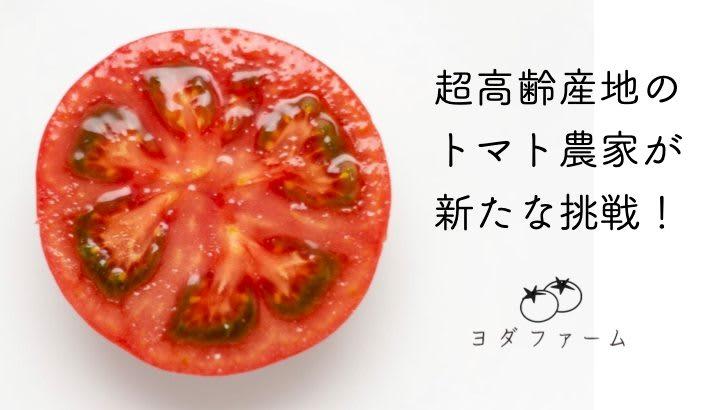 Makuake|『子どもと一緒に食べられる』旬の春トマトと、新たな挑戦!特殊製法レアドライトマト